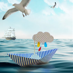 freetoedit myedit seagulls gulls ocean