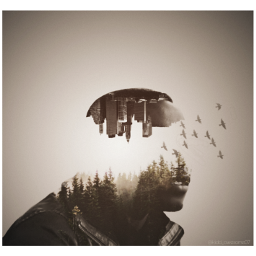 doubleexposure picart pictureoftheday art photooftheday freetoedit