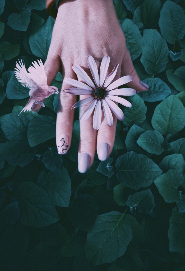 #freetoedit  #flowerpower #nailsdone #makingsomething  #playwithlights