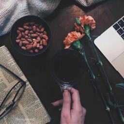 stilllife stilllifephotography shelfie macbook flowers pcshelfiesandflatlays shelfiesandflatlays