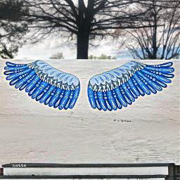 freetoedit myoriginalphoto wings