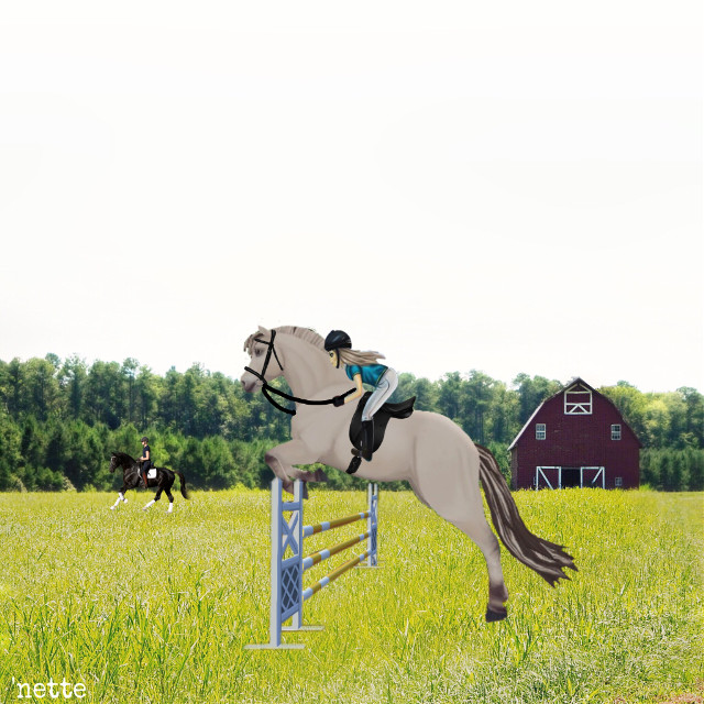 #freetoedit  #sso.  #horselove  #horse. #horsejumping  #horseriding