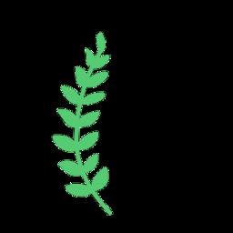 green leaf greenery plant plants freetoedit