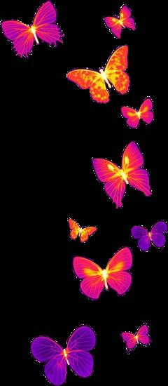 neon butterfly freetoedit
