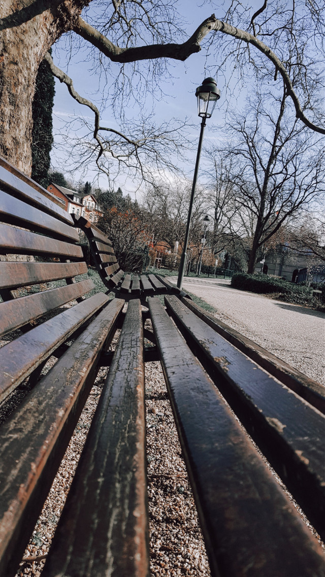 Nothing special... °• •° #freetoedit  #bench #randomshot #photography