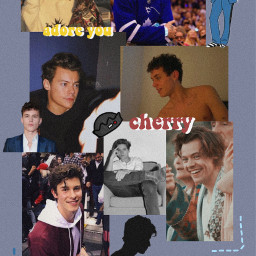 aronpiper harrystyles shawnmendes colesprouse freetoedit