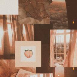 aesthetic peach aestheticpeach pinterest