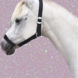pony power flowerpower sparkel gliterr freetoedit