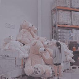 bears cutie cuteness ulzzang aesthetic