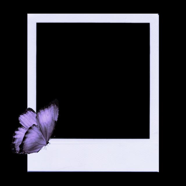 #freetoedit #easter #aesthetic #polaroid #buterfly