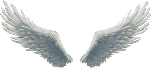 angelwings freetoedit