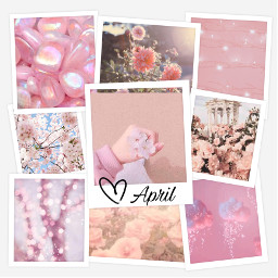april flower pinkflower pinkaesthetic college