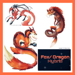 freetoedit fox dragon hybrid fantasyanimal