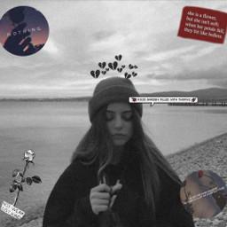 broken roses rosesarered sad edit freetoedit