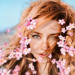 freetoedit srccherryblossompetals flower cherryblossompetals girl