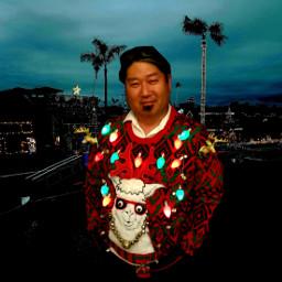 christmas holiday design fashion llama