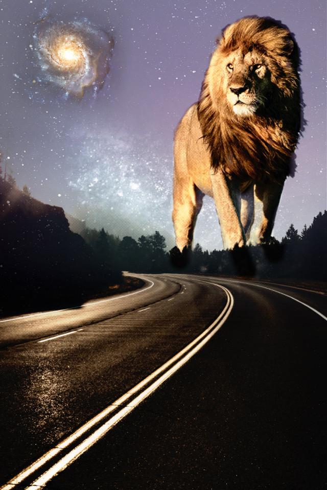 Lion King #freetoedit #snapseed #editingapps #picsartediting #picsart_editing_background #ocassional #picartediting #picedits #picart #picsartedits #picsartedit