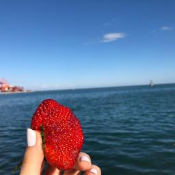 strawberries sea sky lovely