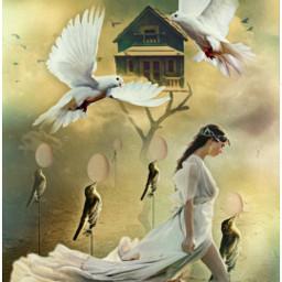freetoedit papicks eggs birds birdhouse