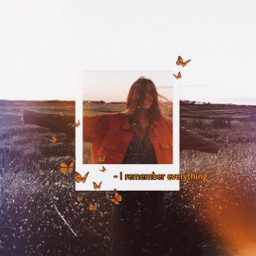 retro replay aesthetic butterfly polaroid freetoedit