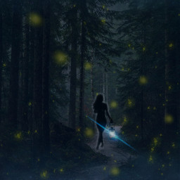 freetoedit night forest pathfinder
