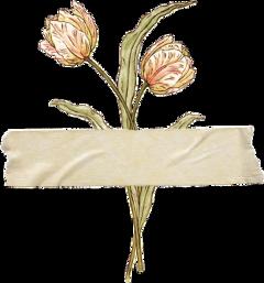 freetoedit tape tear flower aesthetic