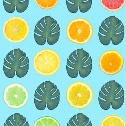 rainbow grapefruit orange lemon lime freetoedit