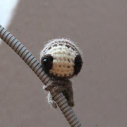 sloth sloths cute crochet crochetlove pcdiyphotography diyphotography