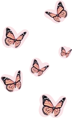 vsco butterfly aesthetic pink collage freetoedit