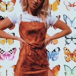 vsco aesthetic retro butterfly butterflies