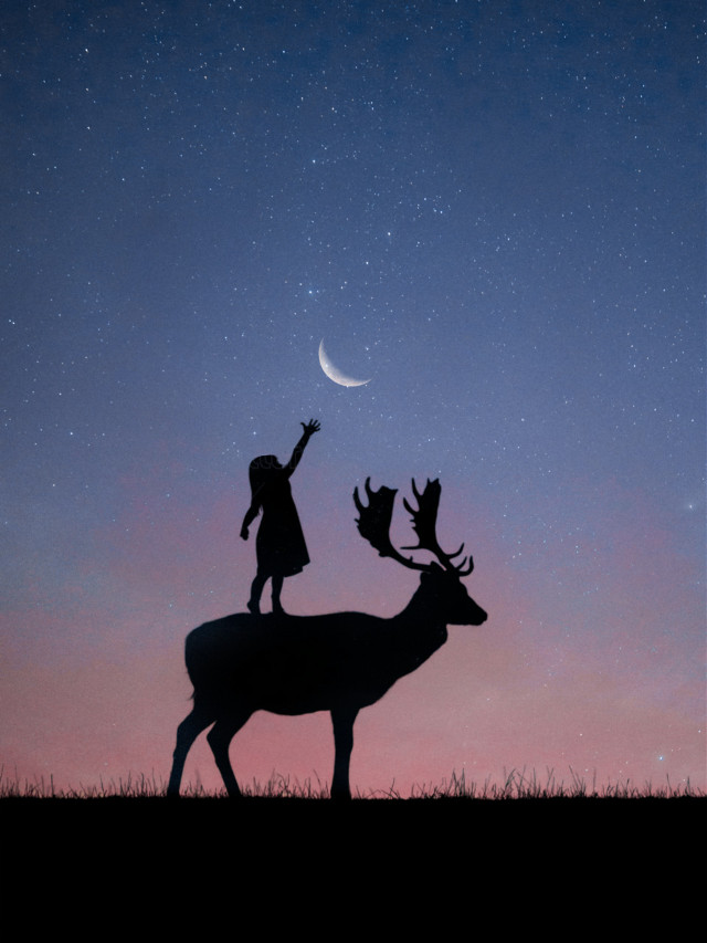 #freetoedit #moon #silhouette #deer #girl @picsart