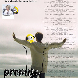 jimin bts army promise