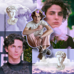 timotheechalamet timothee aesthetic freetoedit