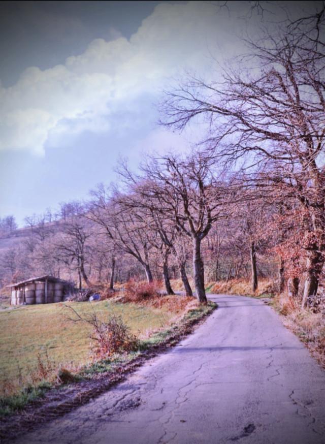 #freetoedit #landscape