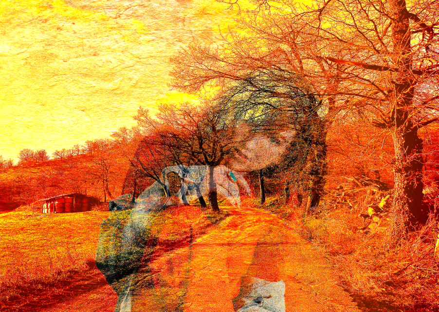 The Fading Day  #myedit #multiexposure #colorchange #nature #reflection  #freetoedit