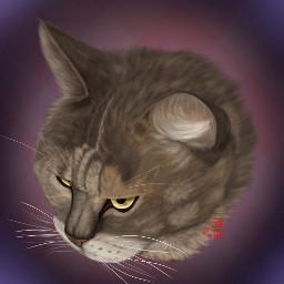 pet art drawing digital digitalart