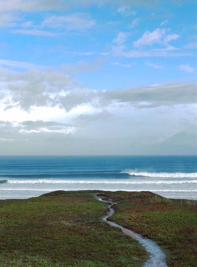 #nature #morningwalk #bythebeach #goundplants #wildplants #pathway #seaview #oceanwaves #horizon #skyandclouds #lowangleview #beachvibes #naturephotography                                                                                            #freetoedit