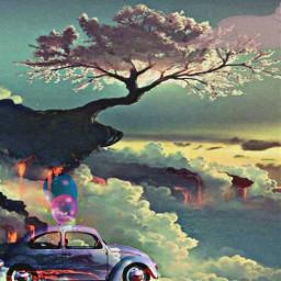 freetoedit cherryblossom cliff car vw