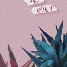 freetoedit aesthetic palms pink blue