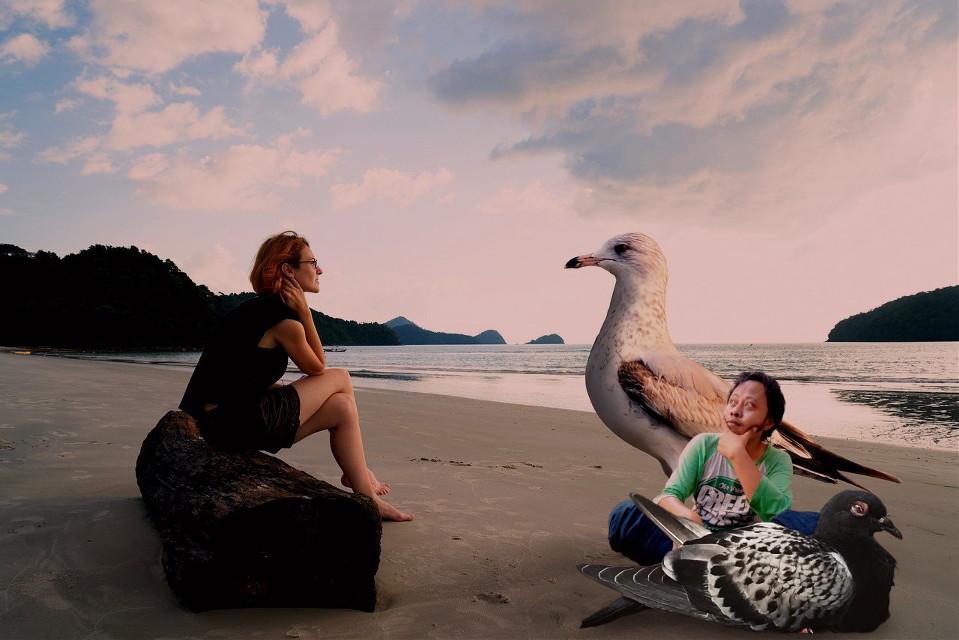 #freetoedit #longbeach #pantai #merpati #awan #wanita
