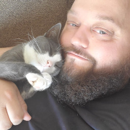 ogb onlygetsbetter cats kittens feline