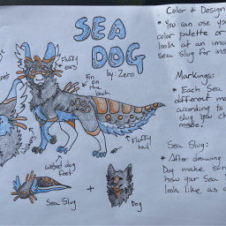 furry referencesheet seadog fursona drawing