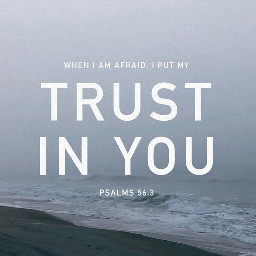 freetoedit verseoftheday bibleverse trustingod trust