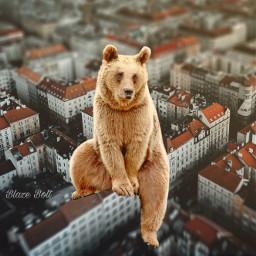 freetoedit surreal bear city animal