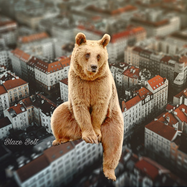 #freetoedit #surreal #bear #city from Unsplash #animal #buildings