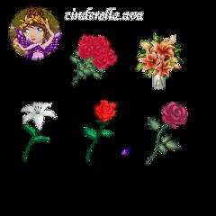 freetoedit аватария аватарияфотошоп фотошопаватария аватарияцветок