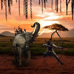 freetoedit elephant archery sunset edit