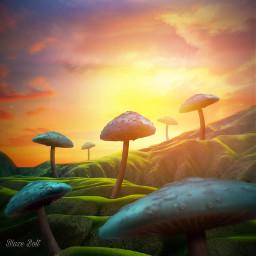 landscape mushrooms sunset surreal ecsurrealisticworld surrealisticworld