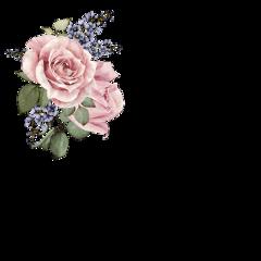 цветы эстетика easthetic freetoedit