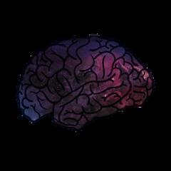 мозг космос вседлябаб эстетика мозгкосмос freetoedit